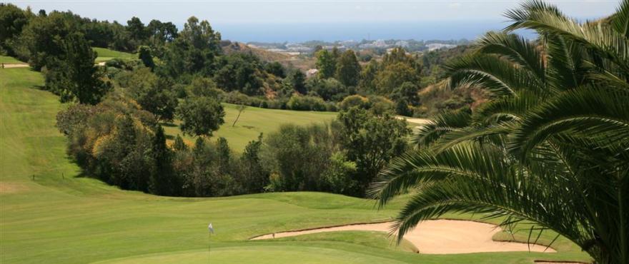 C4_Los_Arqueros_golf